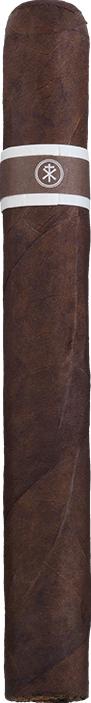 cromagnon aquitaine anthropology