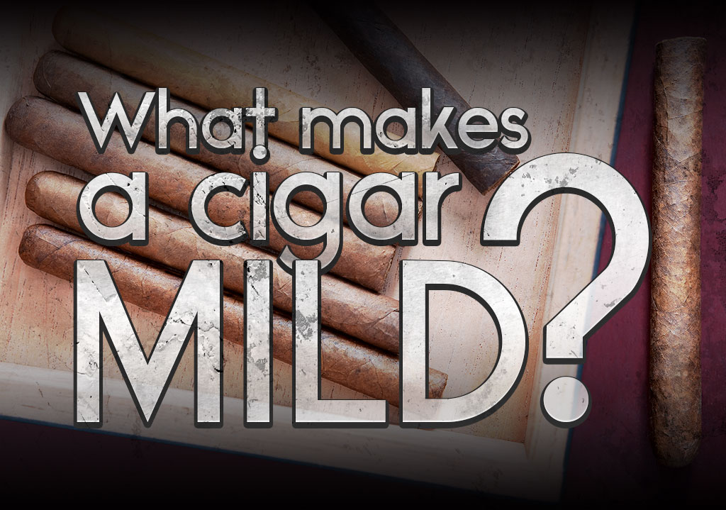 Cigar Q&A: What Makes a Cigar Mild?