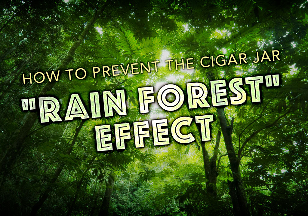 "How to Prevent the Cigar Jar Humidor ""Rain Forest"" Effect"