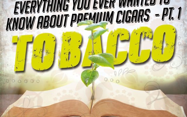 Everything You Ever Wanted to Know about Premium Cigars Part 1 – Tobacco
