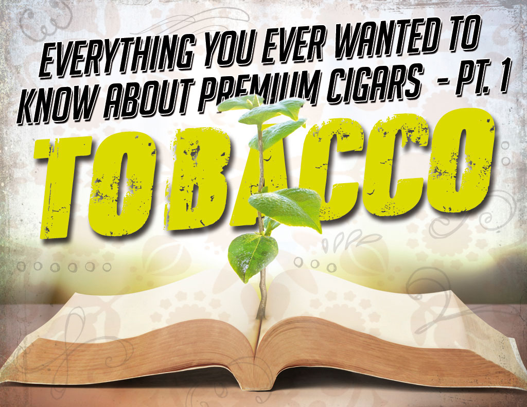 know about premium cigars part 1