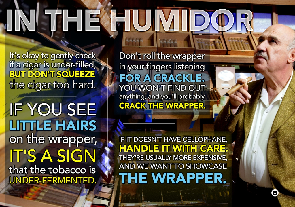 In The Humidor cigar smoking pro tips