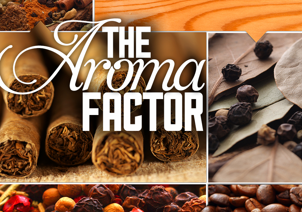 Cigar Aroma: The most overlooked attribute