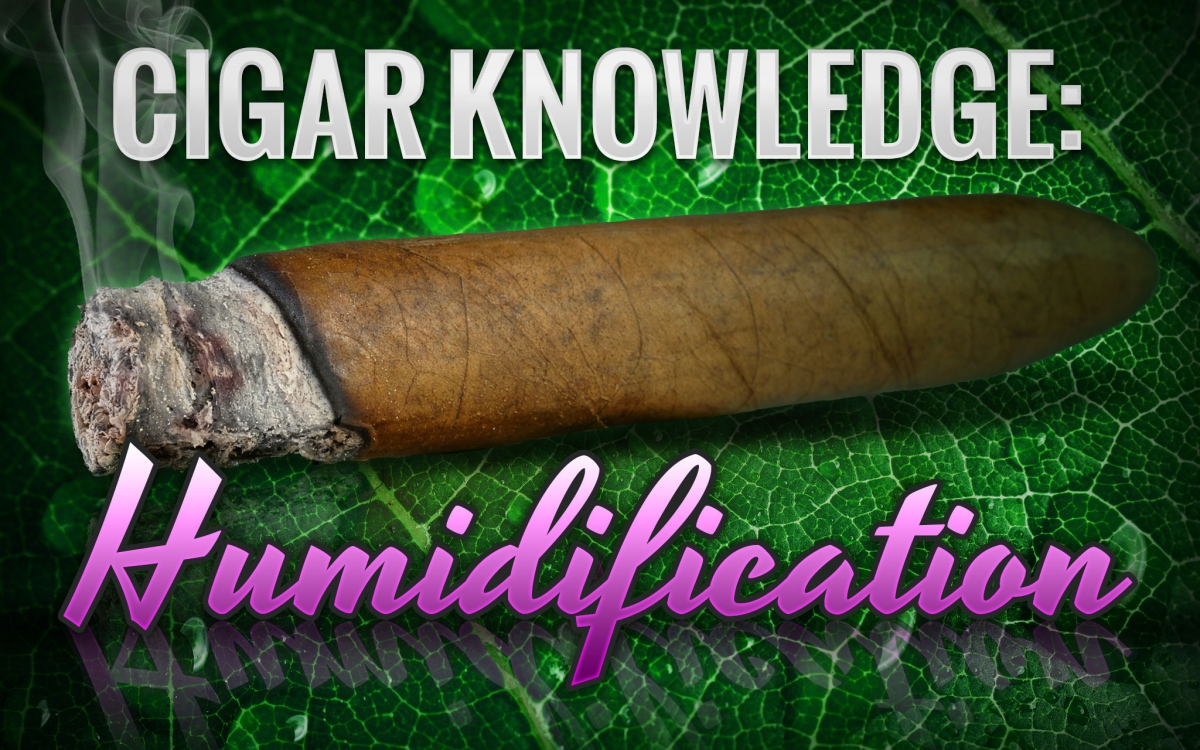 Why cigar humidification matters and what to use