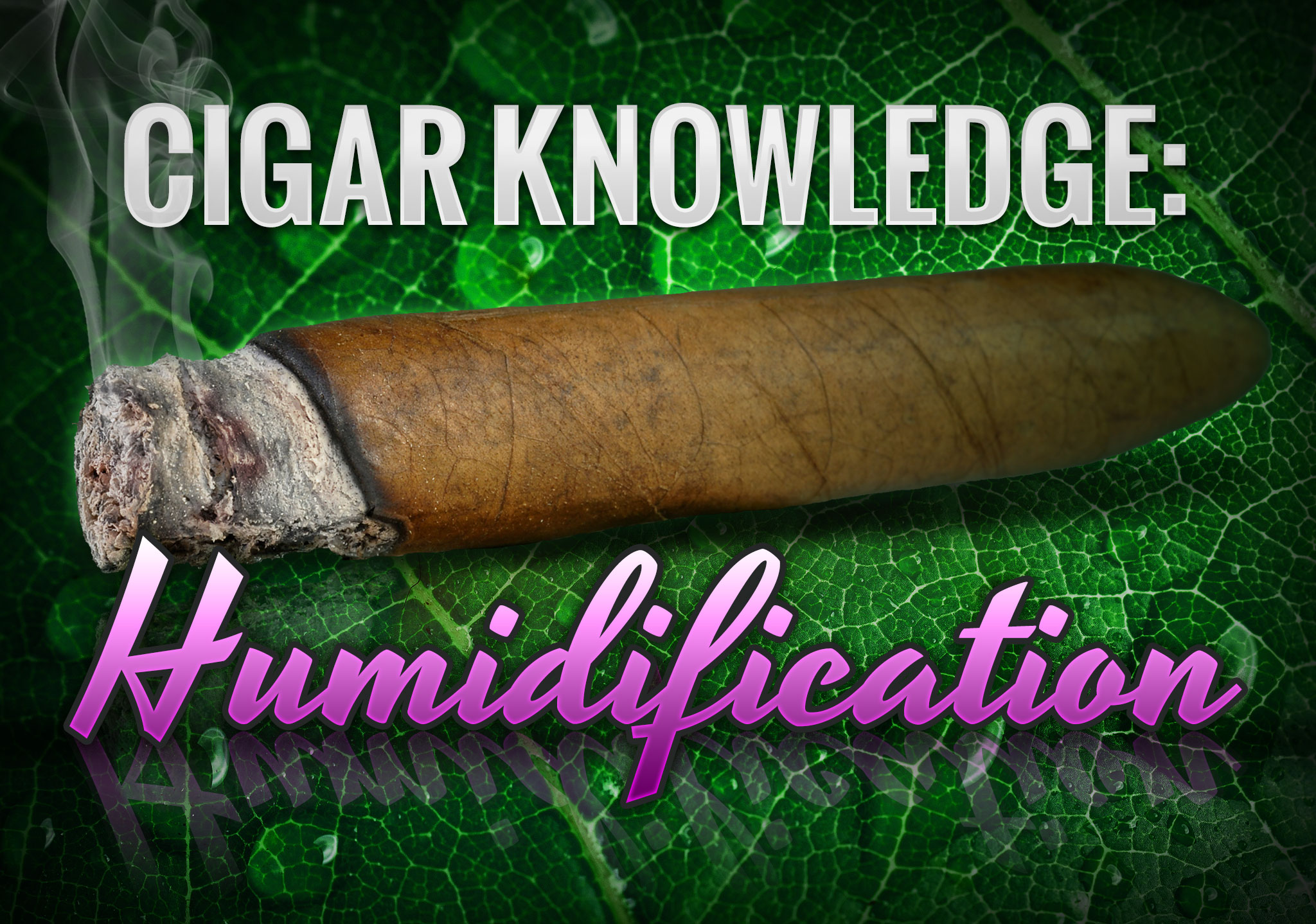 Learn why cigar humidification matters