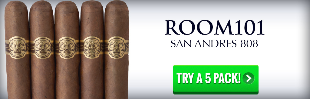 Room 101 San Andres 5pack