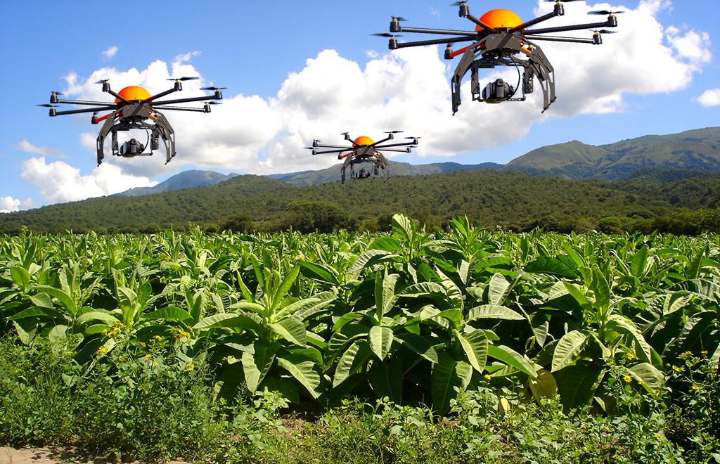 nick perdomo tobacco field drones