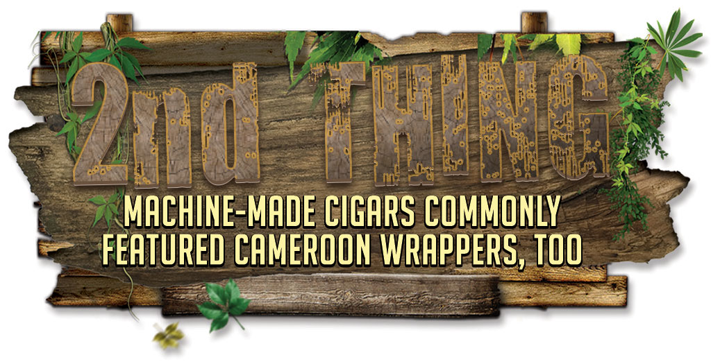 5-Things-2 about Cameroon wrapper cigars