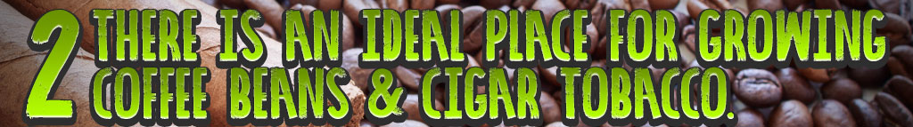 coffee and cigars header_02