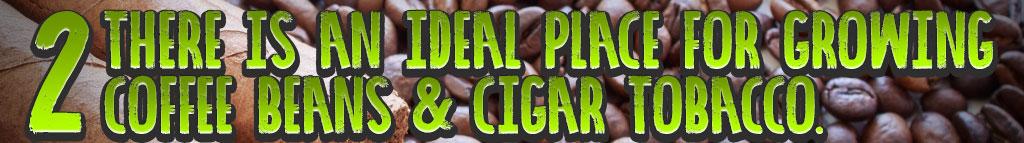 coffee and cigars header_02