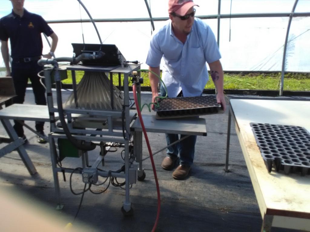 altadis broadleaf wrapper tour seed trays 3