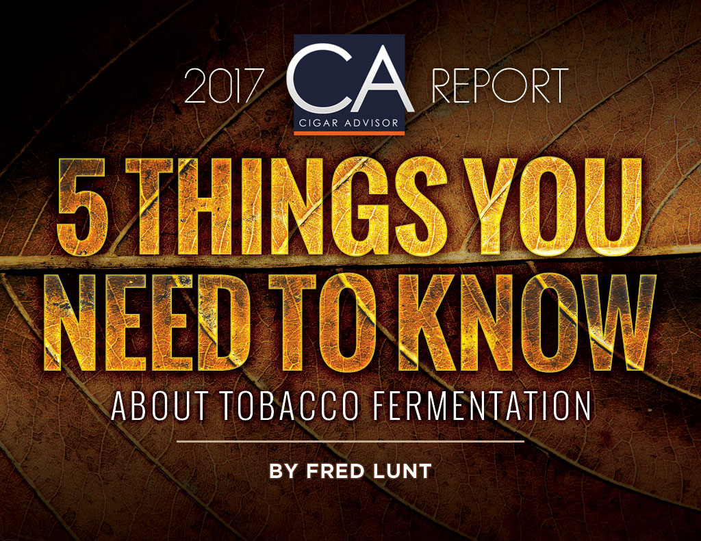 5 Things You Need to Know About Cigar Tobacco Fermentation