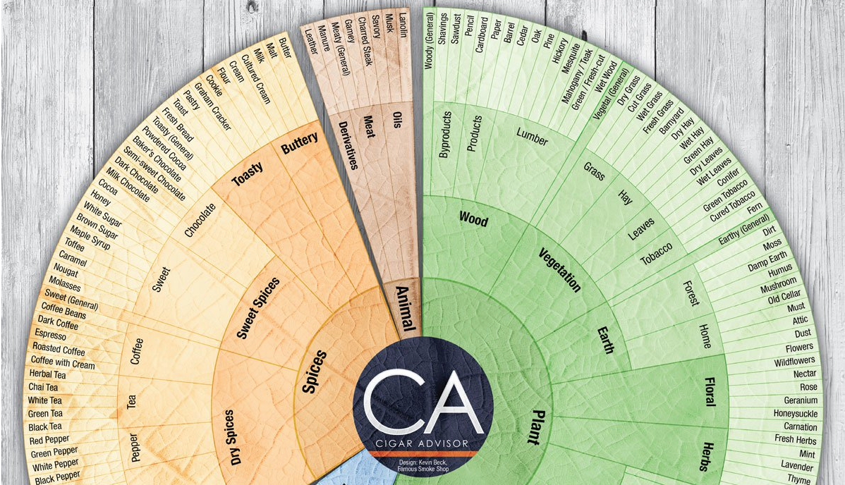cigar guides cigar flavor wheel