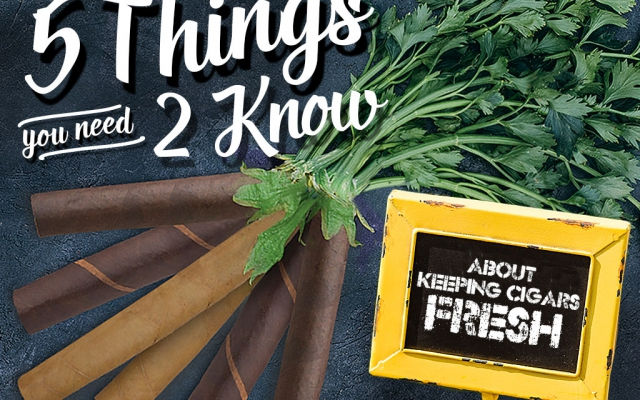 5 Things You Need to Know About Keeping Cigars Fresh How to CACover