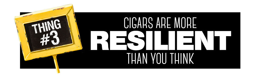 Things You Need to Know About Keeping Cigars Fresh Tip 4