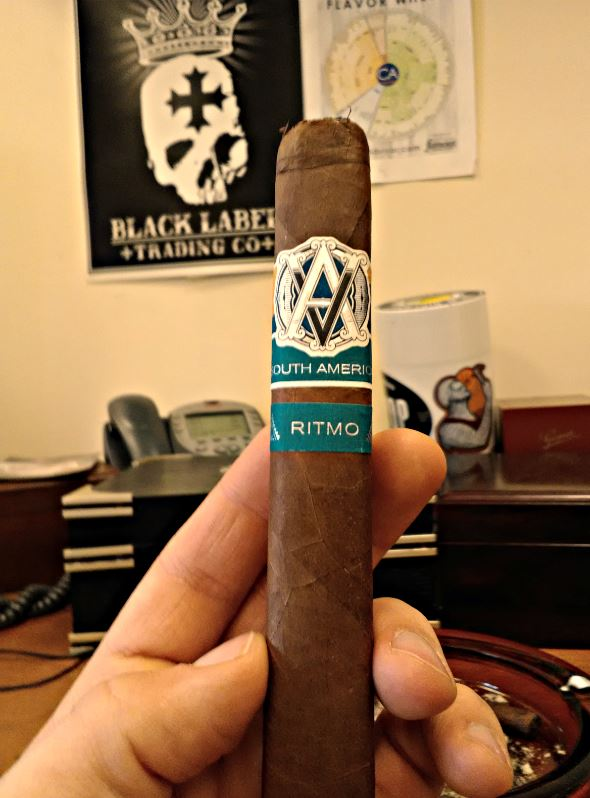 Avo cigars guide buy avo syncro south america Ritmo cigar review