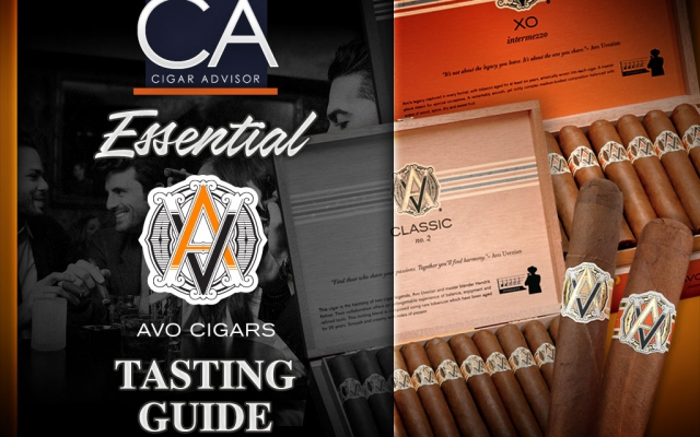 avo cigars review guide tasting guide CACover