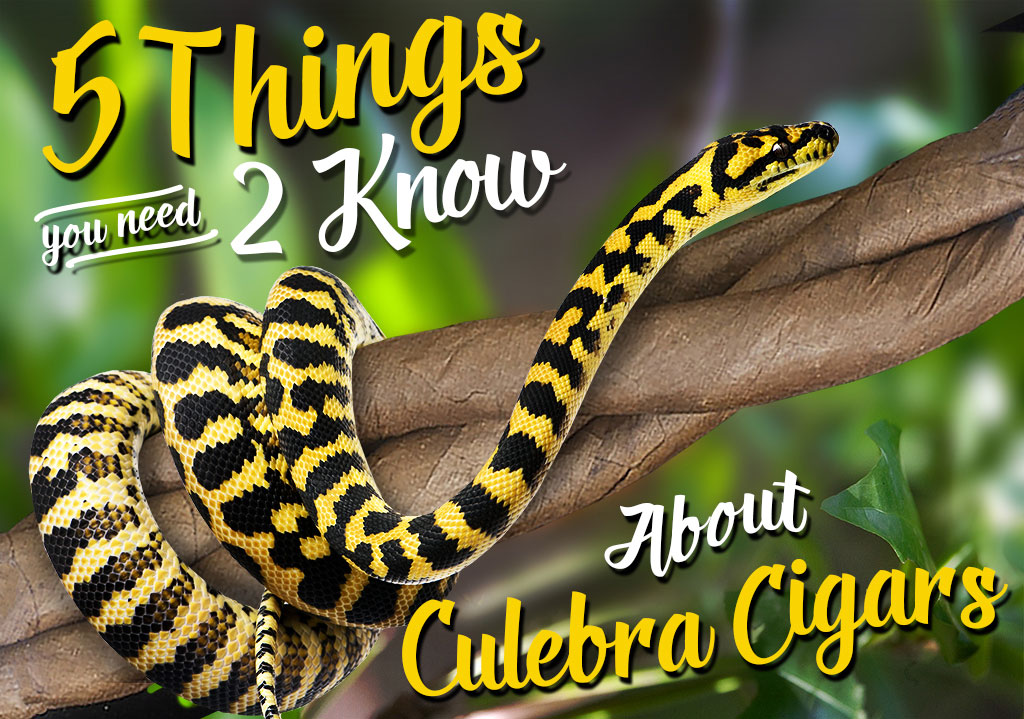 5 Things You Need to Know About… Culebra Cigars