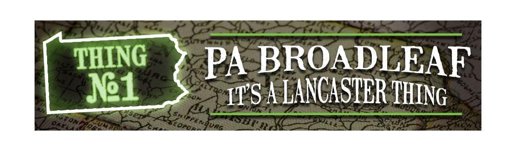 pa broadleaf tobacco 1