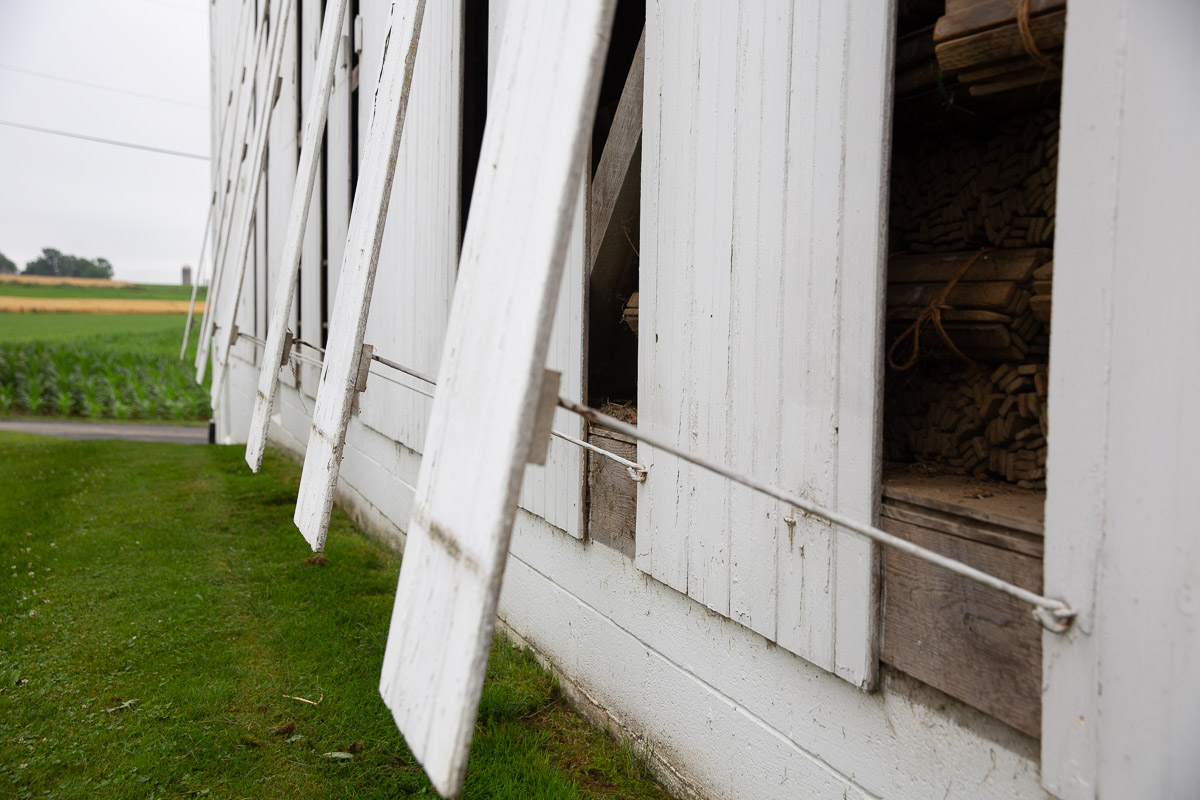 pa broadleaf tobacco lancaster barn