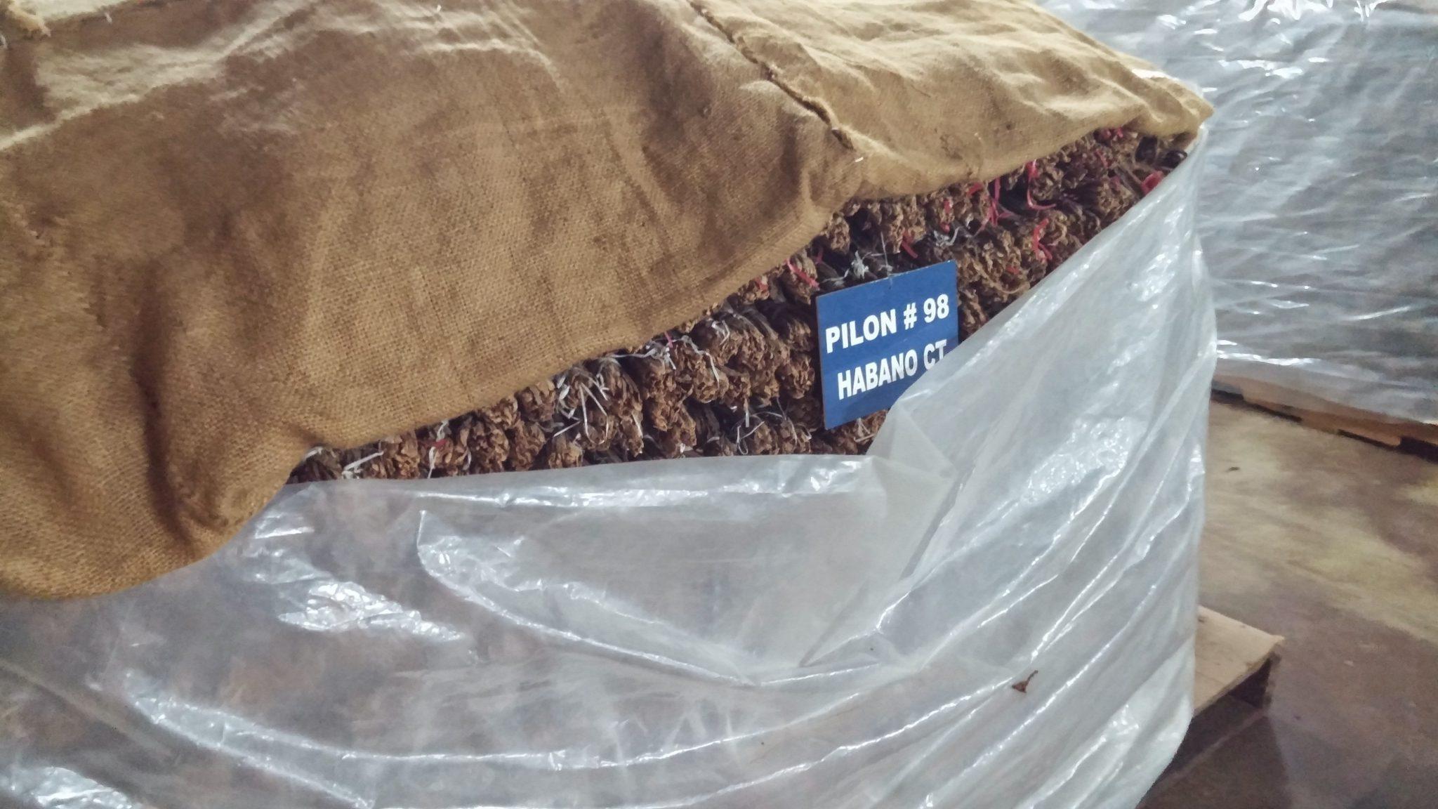 5 things about maduro cigars habano maduro pilon