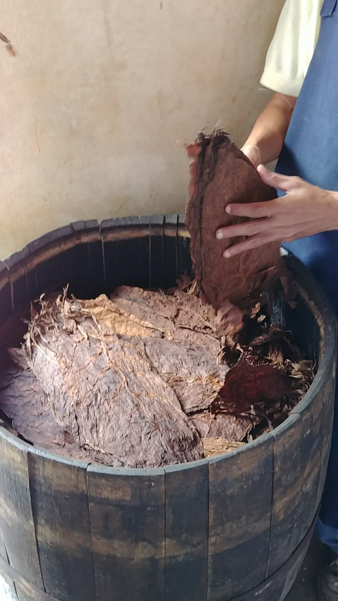 5 things about aging cigars - aging tobacco in whiskey barrels - Davidoff the Late Hour tobaccos