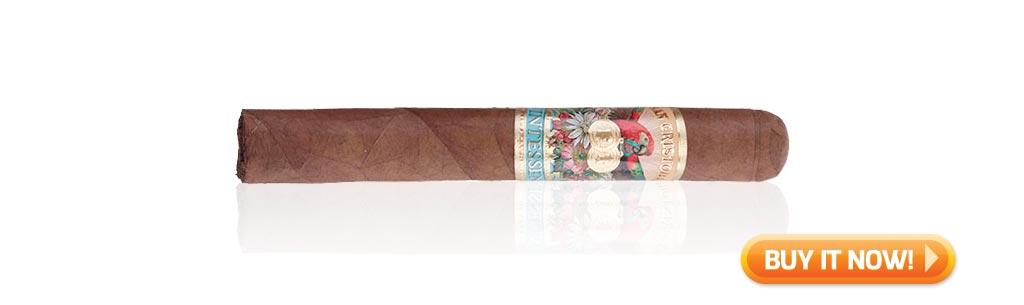 nowsmoking san cristobal quintessence cigar review at Famous Smoke Shop
