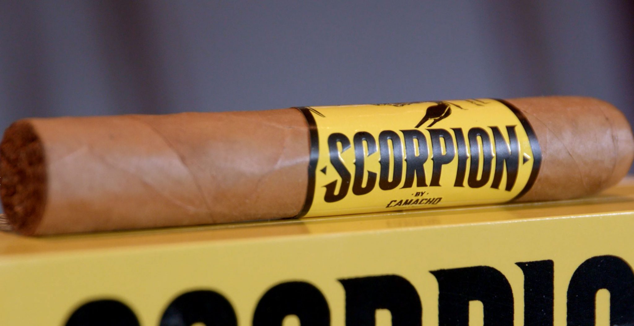 camacho scorpion connecticut cigar review video box and single cigar