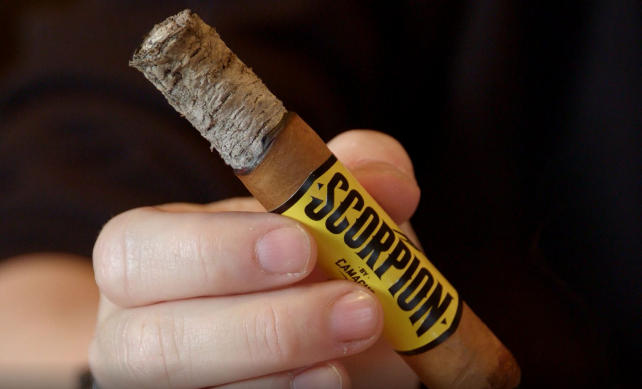 camacho scorpion connecticut cigar review video Camacho Scorpion with long ash at Famous Smoke Shop