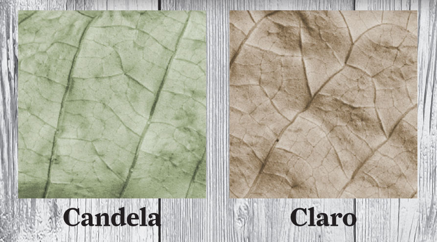 Spanish Cigar Terms You Should Know Before Buying A Cigar Candela Claro wrapper color guide
