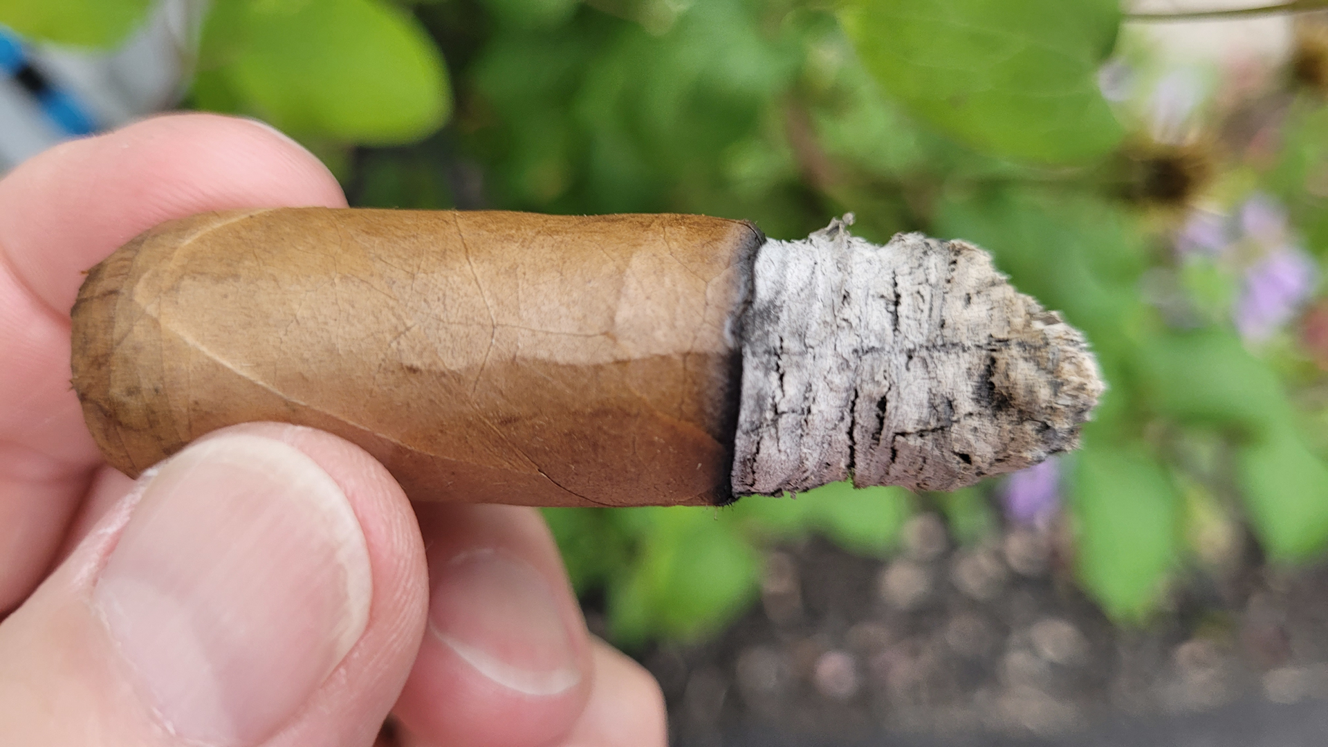 Alec Bradley Occidental Reserve Connecticut review summary