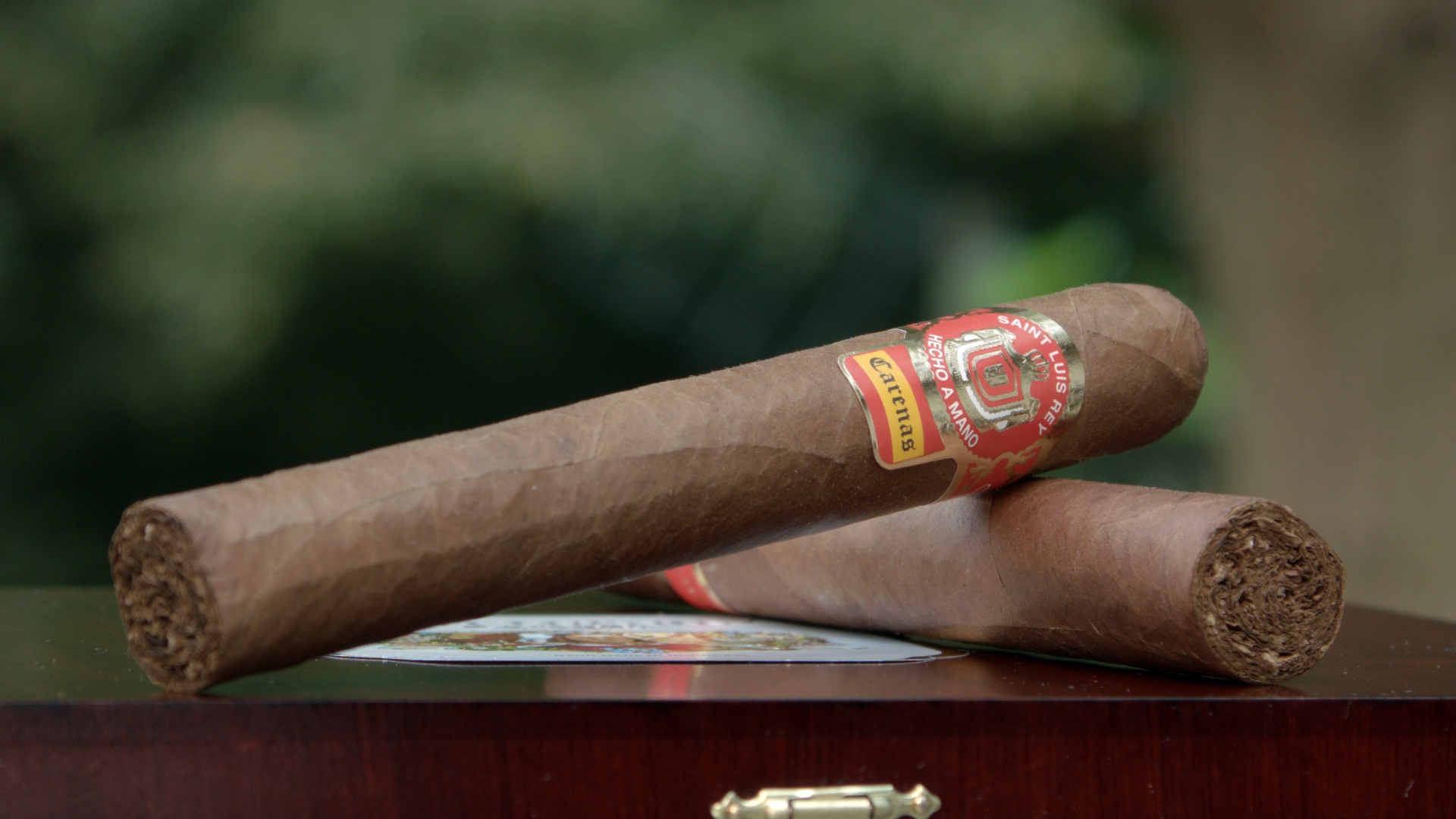 saint luis rey carenas toro cigars resting on the box from the cigar advisor panel review