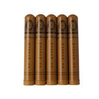 Perdomo Champagne Sun Grown Magnum 5 Pack