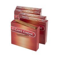 Wintermans Cafe Creme (Arome) Oriental 5/20