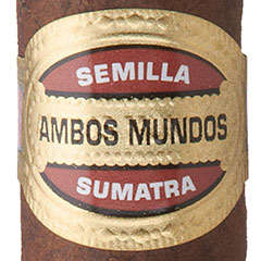 Ambos Mundos Cigars Online for Sale