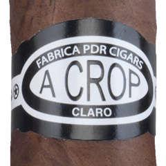 A-Crop Cuban Wheel Robusto - CI-POP-ROBN - 400