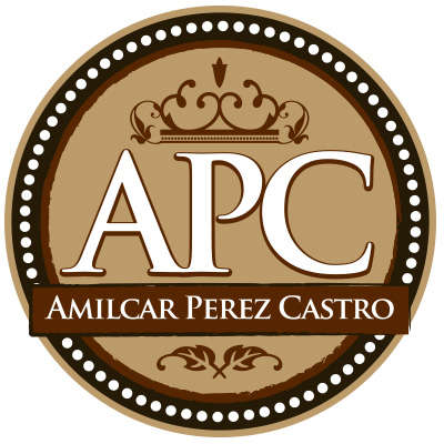 Amilcar Perez Castro Test Flight Logo