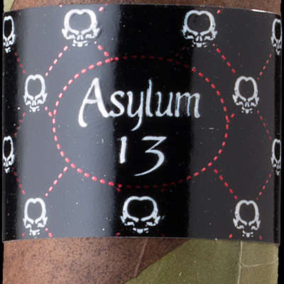 Asylum 13 The OGRE 880 Logo