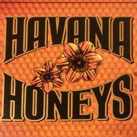 Havana Honeys Dominican