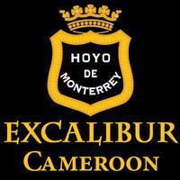 Excalibur Cameroon