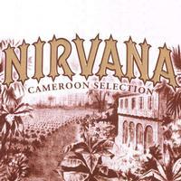 Nirvana by Drew Estate