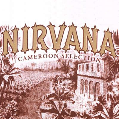 Nirvana Torpedo Logo