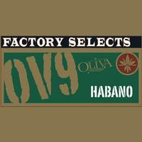 Oliva Factory Selects Habano