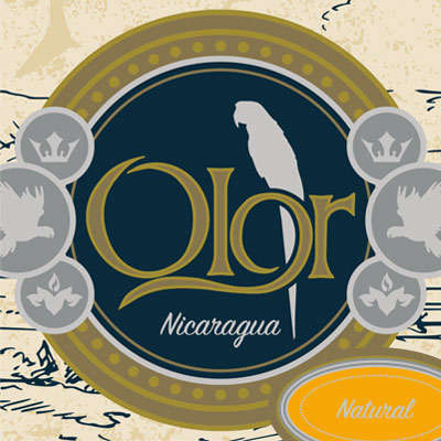 Olor Nicaragua Natural By Perdomo