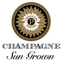 Perdomo Champagne Sun Grown