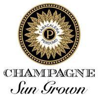 Perdomo Champagne Sun Grown
