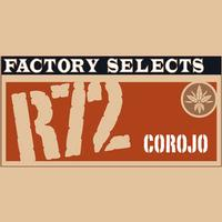 Rocky Patel Factory Selects R72