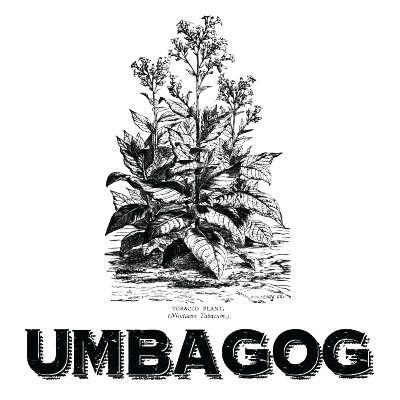 Umbagog Cigars Online for Sale
