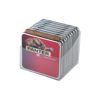 Agio Panter Vanilla Big Cat 10/10 - CI-AGP-VANBC - 400